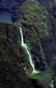 Best of Fiordland 3
